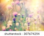 Stock photo flowering blooming thistle burdock 307674254