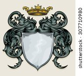 vector drawing of a   heraldic... | Shutterstock .eps vector #307710980