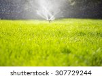 watering the lawn | Shutterstock . vector #307729244