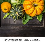 Colorful Pumpkin With Stem And...