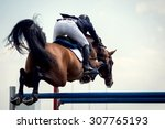 equestrian sports  horse... | Shutterstock . vector #307765193