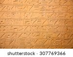 egyptian hieroglyphs on the wall | Shutterstock . vector #307769366