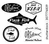 set of fish logo template....   Shutterstock .eps vector #307776839
