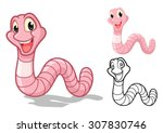 high quality detailed earthworm ... | Shutterstock .eps vector #307830746