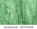 old beech wood bleached and... | Shutterstock . vector #307913168