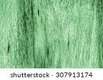 old beech wood bleached and... | Shutterstock . vector #307913174