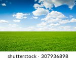 field of grass and perfect sky | Shutterstock . vector #307936898