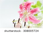 Pink Tiger Lily In Arrangement