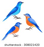 Stylized Birds   Bluebird