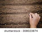 close up farmer hand sawing... | Shutterstock . vector #308023874