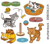 color set of cute domestic... | Shutterstock .eps vector #308036114