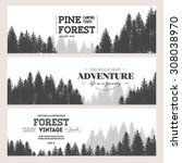 pine forest. journey banner... | Shutterstock .eps vector #308038970