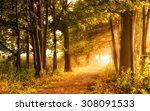 beautiful autumn scene invites... | Shutterstock . vector #308091533