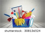 cleaning. | Shutterstock . vector #308136524