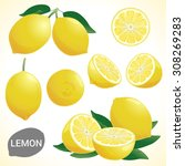 set of fresh yellow lemon in... | Shutterstock .eps vector #308269283