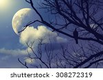 Stars  Moon And Tree With A...