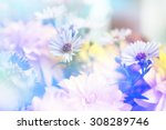 Flower Background. Beautiful...
