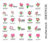 bouquet icons set   isolated on ... | Shutterstock .eps vector #308559230