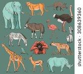 hand drawn animal planet... | Shutterstock .eps vector #308639360