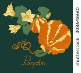 pumpkin plant with flowers ... | Shutterstock .eps vector #308648660