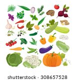 set of fresh vegetables | Shutterstock .eps vector #308657528