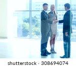 business people shaking hands... | Shutterstock . vector #308694074