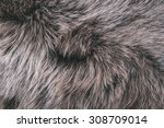 White Grey  Dark Brown Wolf Fo...