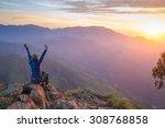 happy celebrating winning... | Shutterstock . vector #308768858