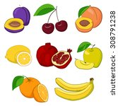 set of fresh fruits  cherry ... | Shutterstock .eps vector #308791238