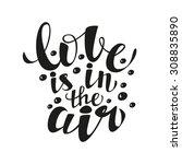 hand lettering calligraphic... | Shutterstock .eps vector #308835890