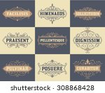 pack of labels and banners | Shutterstock .eps vector #308868428