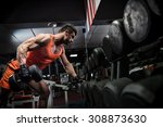 young adult bodybuilder doing... | Shutterstock . vector #308873630