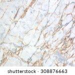 marble | Shutterstock . vector #308876663