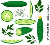 set of ripe cucumbers made in... | Shutterstock .eps vector #308946020