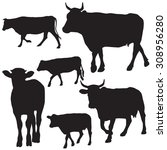 cow silhouette collection  ... | Shutterstock .eps vector #308956280