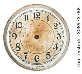 blank clock dial without hands | Shutterstock . vector #308973788