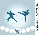 the set of martial art... | Shutterstock .eps vector #308977544