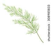 sprig of dill | Shutterstock .eps vector #308985833