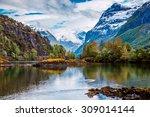 beautiful nature norway natural ... | Shutterstock . vector #309014144