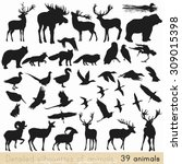 Stock vector collection of vector detailed silhouettes of forest animals 309015398