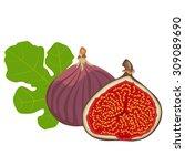 fig   flowers  whole fruit and... | Shutterstock .eps vector #309089690