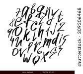 handwritten calligraphic black... | Shutterstock .eps vector #309206468