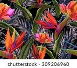seamless tropical flower  plant ... | Shutterstock . vector #309206960