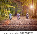 Three Boys Cycling On A Path I...