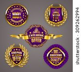 set of luxury gold badges with... | Shutterstock .eps vector #309262994