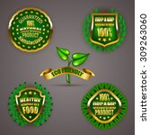 set of luxury gold badges with... | Shutterstock .eps vector #309263060