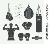 boxing and martial arts logo... | Shutterstock .eps vector #309295340