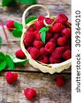 fresh raspberry in to the... | Shutterstock . vector #309364010