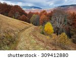 road in the mountain forest.... | Shutterstock . vector #309412880