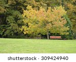autumn trees  park bench  and... | Shutterstock . vector #309424940